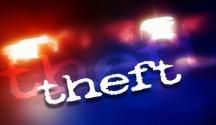 theft logo