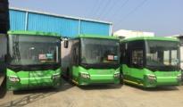 Green Bus in Nagpur