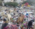 Garbage in Nagpur