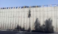 Sitabuldi Flyover, Peepal Tree (